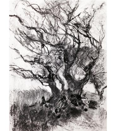 Thumbnail image of Sue Sansome - Simply Drawing