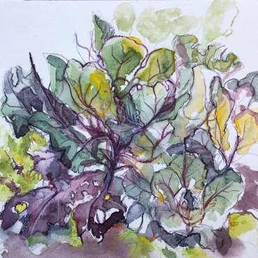 Thumbnail image of 47: Toni Northcott, 'Kim's Cabbages' - LSA Annual Exhibition 2020 | Artwork