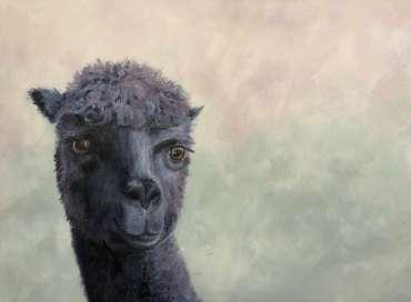 Thumbnail image of Jo Sheppard, 'Dave' - Inspired |  May
