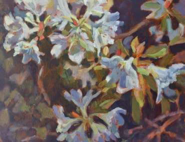 Thumbnail image of Lesley Brooks, 'Rhododendron' - Inspired |  May