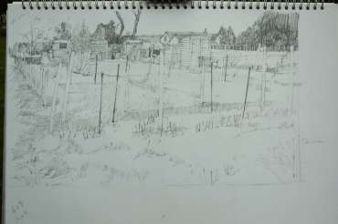Thumbnail image of Mary Rodgers, sketchbook study for Allotment paintings - Inspired |  May