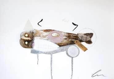 Thumbnail image of Lucy Stevens, 'Barn Owl (Amelia)' - Inspired   June