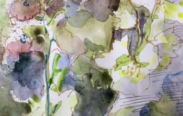 Thumbnail image of Lesley Brooks, 'Delphiniums 1' (sketchbook study) - Inspired | August