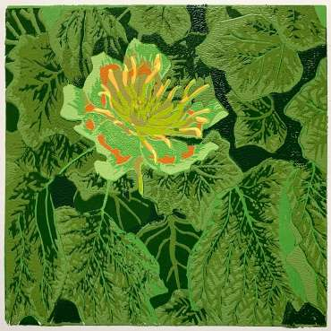 Thumbnail image of 04 | Frank Bingley | Tulip Tree Flower - LSA Annual Exhibition 2021 | Catalogue A - C