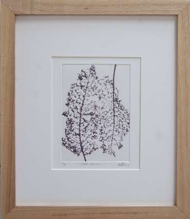 Thumbnail image of 67 | Mita Solanky | Dock Leaves (Sepia) - LSA Annual Exhibition 2021 | Catalogue S - Z