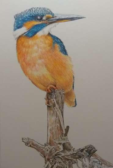 Thumbnail image of Ruth Randall,Kingfisher - Reawakening
