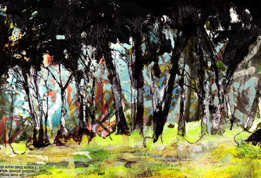 Thumbnail image of The Way through the Woods by Alan Hopwood