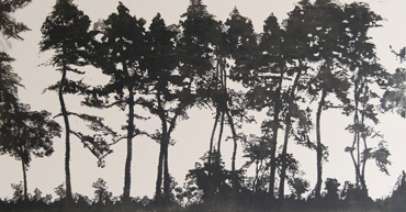 Thumbnail image of Sunlit Pines, Winter Morning by Jo McChesney
