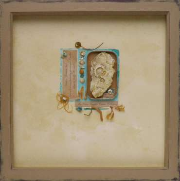 Thumbnail image of Miss Clara Knight's Curious Collections, Seashore Specimens (iii) by Joy Norman