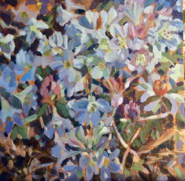 Thumbnail image of Rhododendons - White by Lesley Brooks