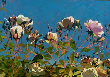Thumbnail image of Rose Garden by Lisa Timmerman