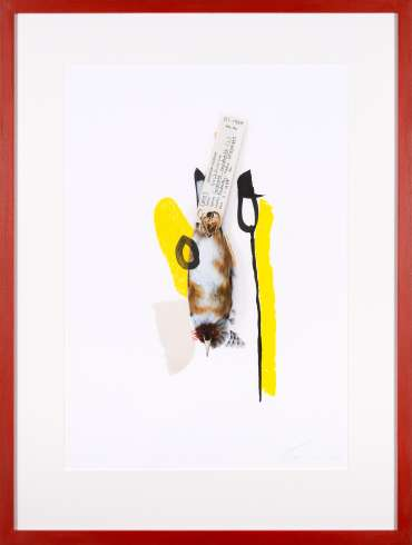 Goldfinch (Scarlet) by Lucy Stevens