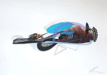 Thumbnail image of Jay (Blue Lobster) by Lucy Stevens