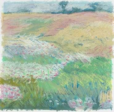 Brocks Hill Meadow 1 by Margaret Chapman