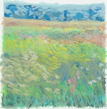 Brocks Hill Meadow 3 by Margaret Chapman