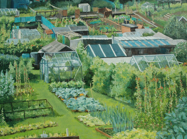 Thumbnail image of Allotments near Leyburn, Yorkshire by Mary Rodgers