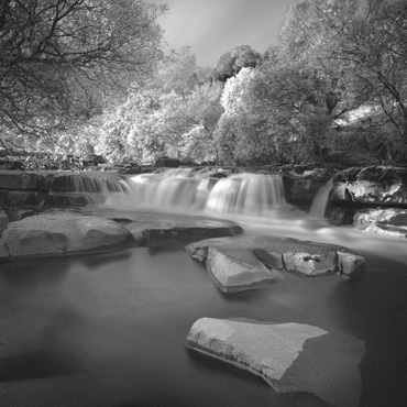 Thumbnail image of wath Force by Michael Moralee