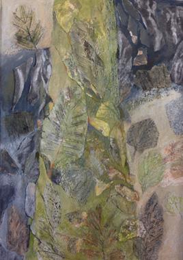 Tree, Botanic Garden by Ruth Cockayne