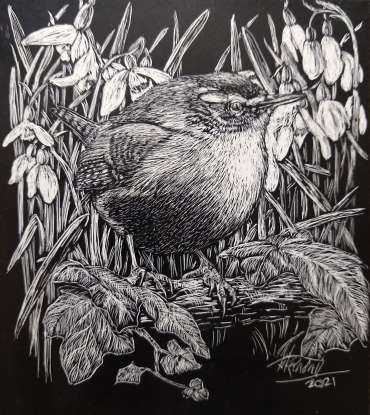 Wren and Snowdrops by Ruth Randall
