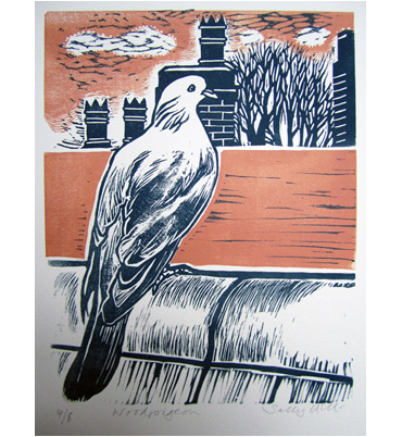 Thumbnail image of Woodpigeon by Sally Hill
