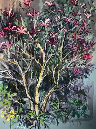 Magnolia 'Susan' by Susan Sansome