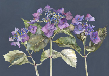 Thumbnail image of Three in a Row by Vivienne Cawson